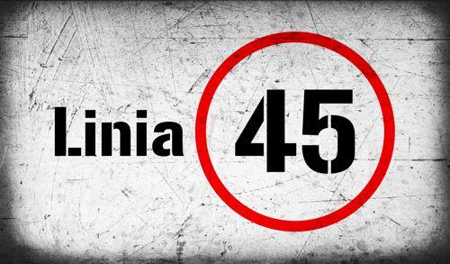 Koncert zespołu LINIA 45